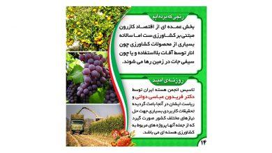 تصویر کشاورزی هسته ای، روزنه ی امیدی برای افزایش بهروه وری کشاورزی و مبارزه با آفات در شهرستان های کازرون و کوهچنار